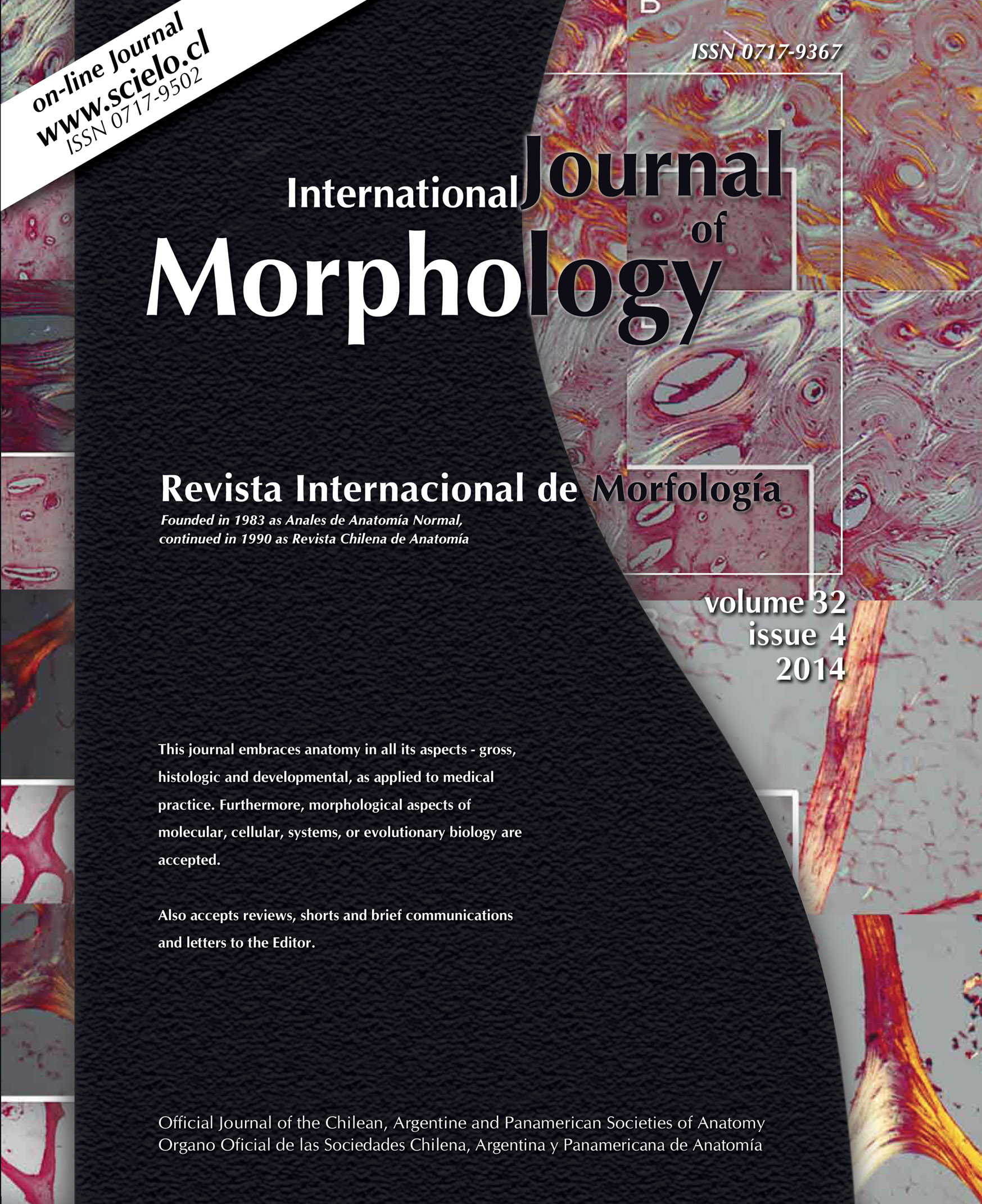 International Journal of Morphology - International Journal of ...
