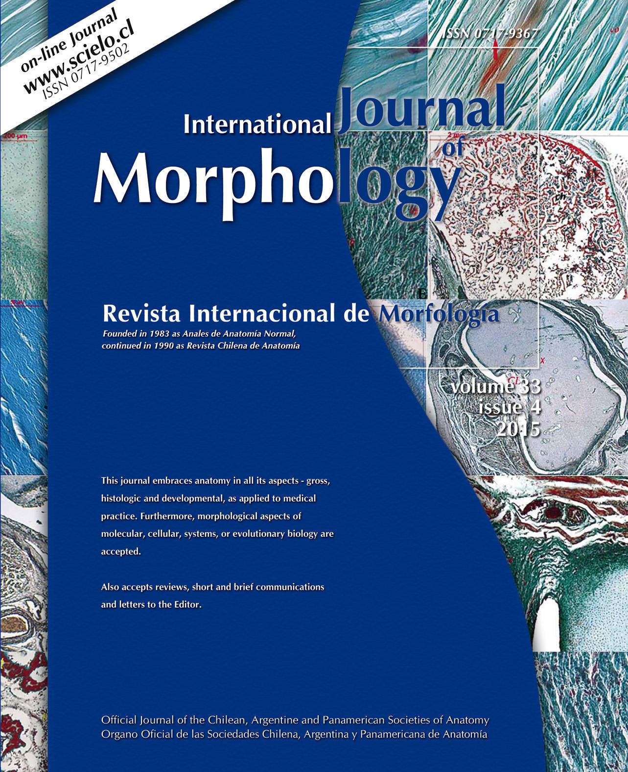 International Journal of Morphology - International Journal of ...